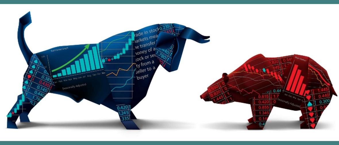 Bear-vs-bull_219